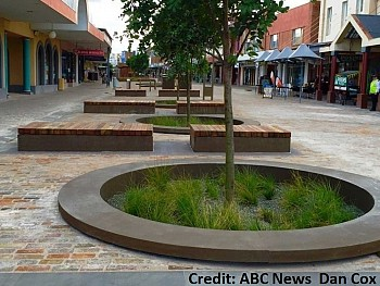 Emerdyn Custom - The Levee, Maitland ABC News Dan Cox.jpg